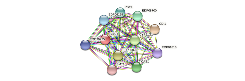 EDO97454 protein (Chlamydomonas reinhardtii) - STRING interaction network
