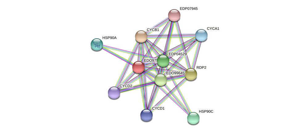 EDO97516 protein (Chlamydomonas reinhardtii) - STRING interaction network