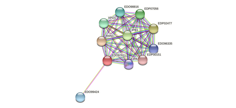 EDO97611 protein (Chlamydomonas reinhardtii) - STRING interaction network