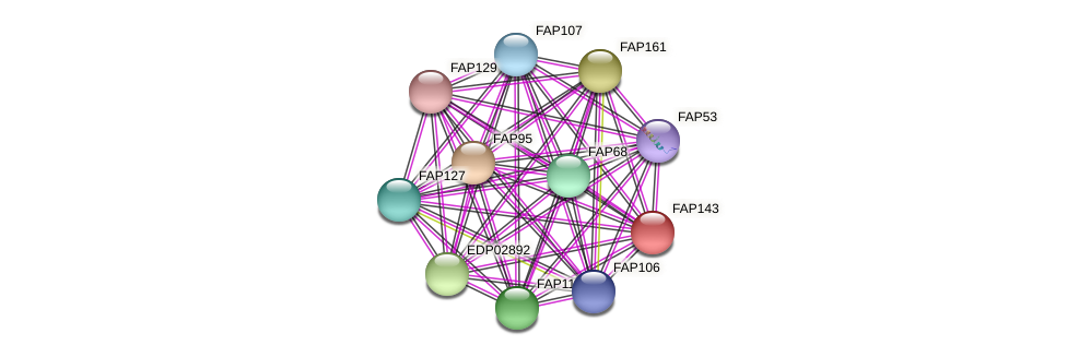 FAP143 protein (Chlamydomonas reinhardtii) - STRING interaction network