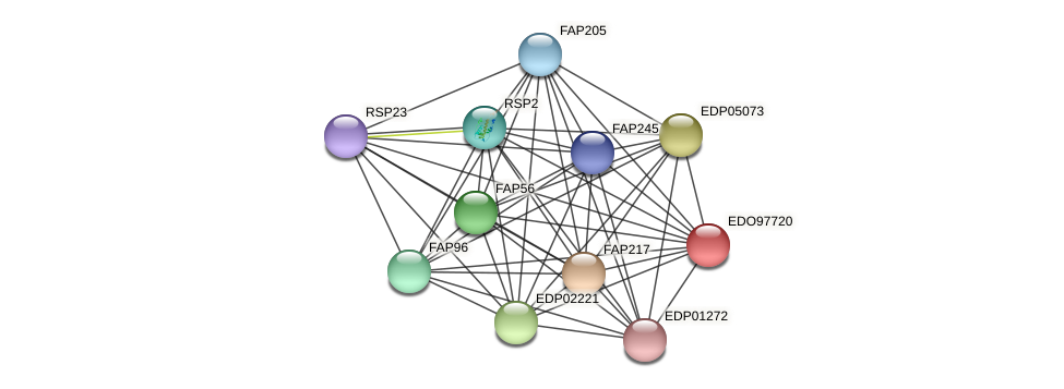 EDO97720 protein (Chlamydomonas reinhardtii) - STRING interaction network