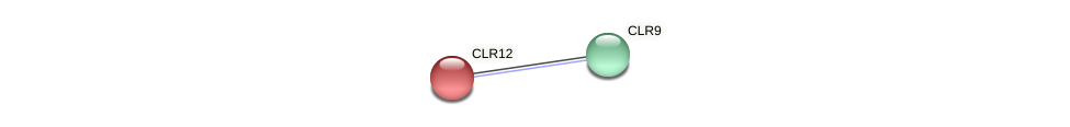 CLR12 protein (Chlamydomonas reinhardtii) - STRING interaction network