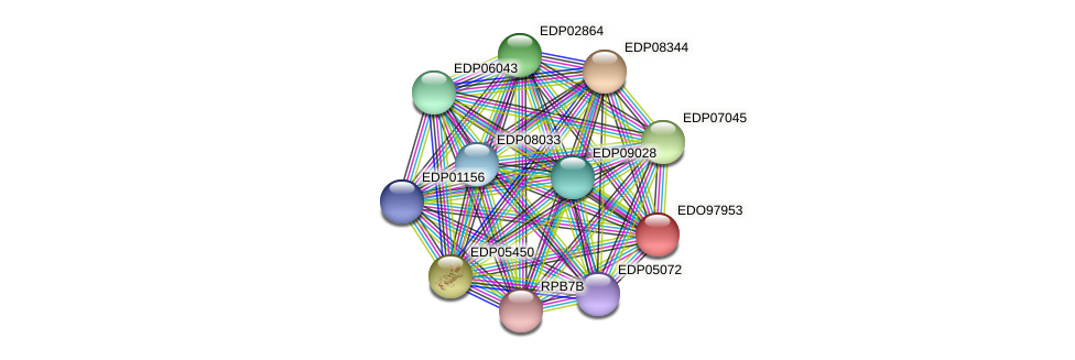 EDO97953 protein (Chlamydomonas reinhardtii) - STRING interaction network