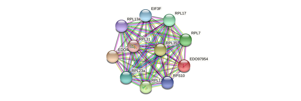 EDO97954 protein (Chlamydomonas reinhardtii) - STRING interaction network