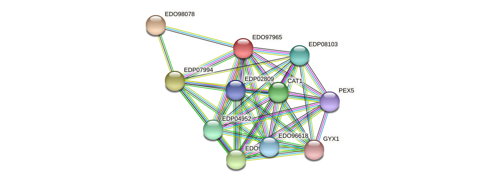 EDO97965 protein (Chlamydomonas reinhardtii) - STRING interaction network