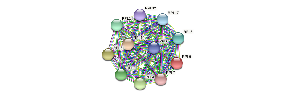 RPL9 protein (Chlamydomonas reinhardtii) - STRING interaction network