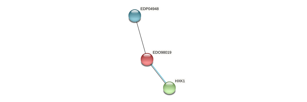 EDO98019 protein (Chlamydomonas reinhardtii) - STRING interaction network