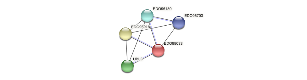 EDO98033 protein (Chlamydomonas reinhardtii) - STRING interaction network