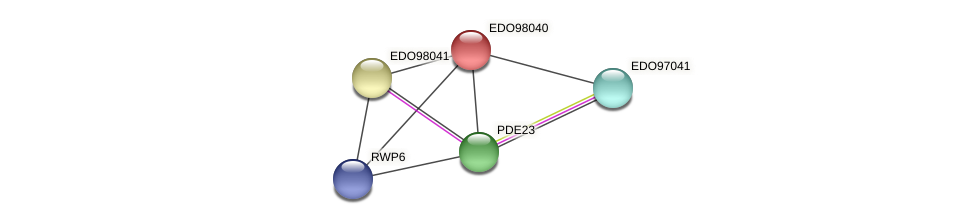 EDO98040 protein (Chlamydomonas reinhardtii) - STRING interaction network