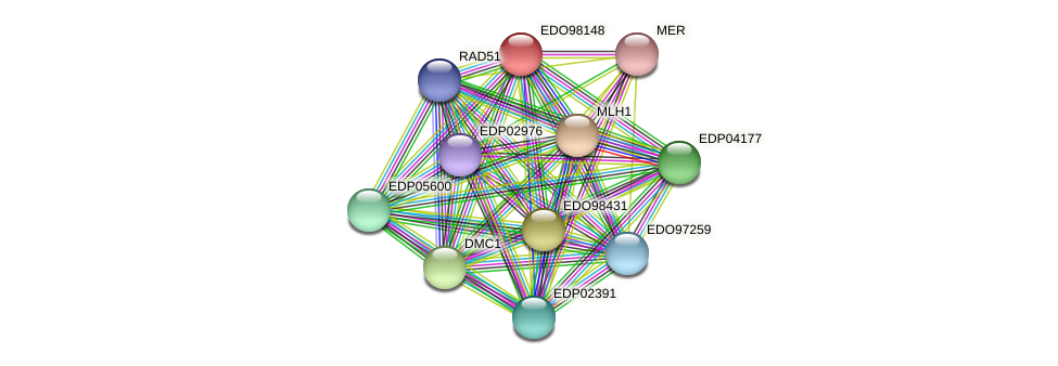 EDO98148 protein (Chlamydomonas reinhardtii) - STRING interaction network