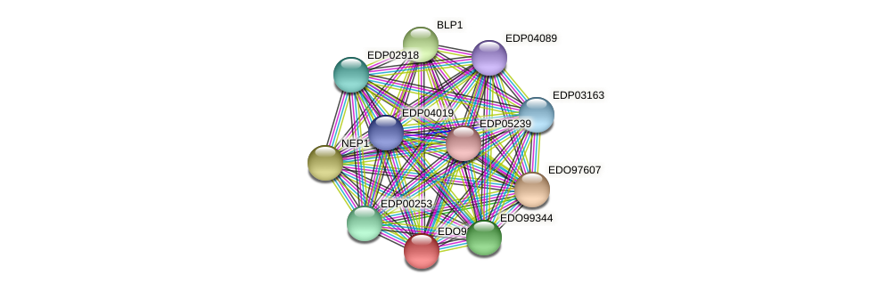 EDO98320 protein (Chlamydomonas reinhardtii) - STRING interaction network