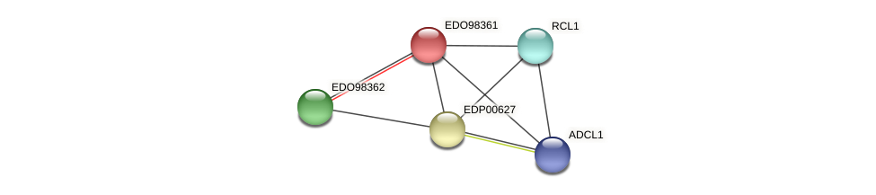 EDO98361 protein (Chlamydomonas reinhardtii) - STRING interaction network