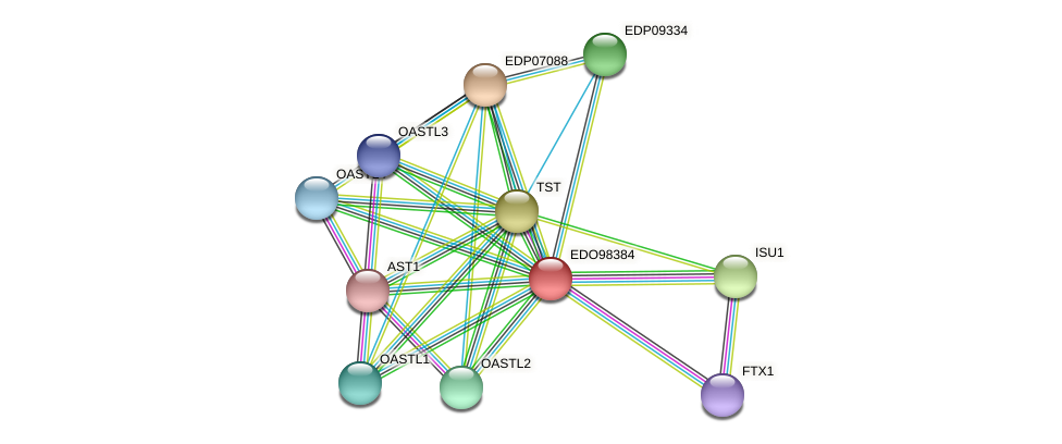 EDO98384 protein (Chlamydomonas reinhardtii) - STRING interaction network