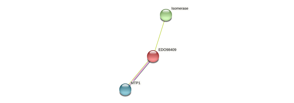 EDO98409 protein (Chlamydomonas reinhardtii) - STRING interaction network