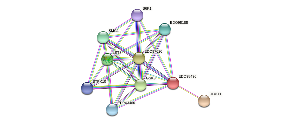 EDO98496 protein (Chlamydomonas reinhardtii) - STRING interaction network