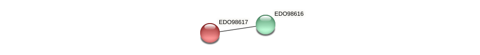 EDO98617 protein (Chlamydomonas reinhardtii) - STRING interaction network