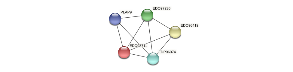EDO98711 protein (Chlamydomonas reinhardtii) - STRING interaction network
