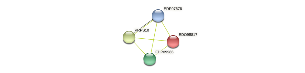 EDO98817 protein (Chlamydomonas reinhardtii) - STRING interaction network