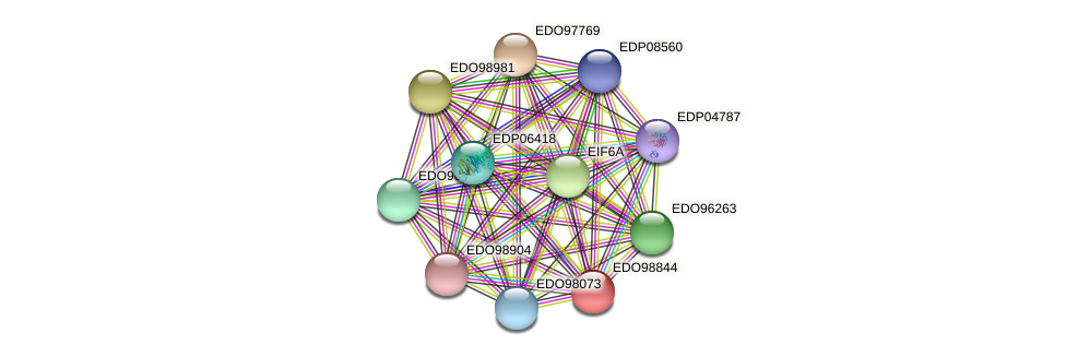EDO98844 protein (Chlamydomonas reinhardtii) - STRING interaction network