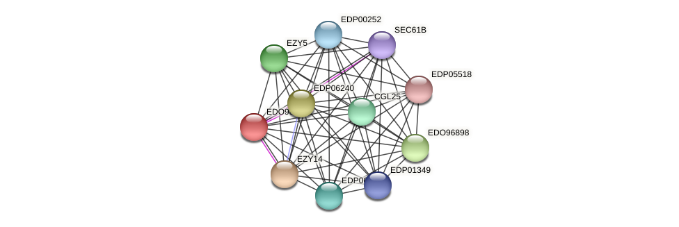 EDO98851 protein (Chlamydomonas reinhardtii) - STRING interaction network