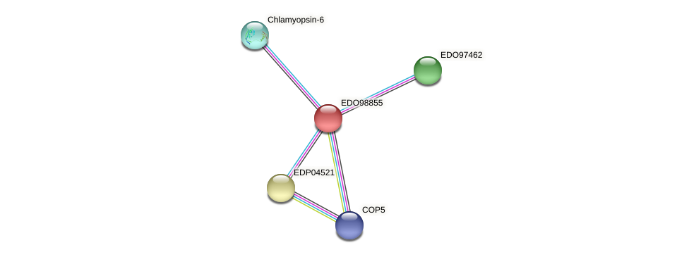 EDO98855 protein (Chlamydomonas reinhardtii) - STRING interaction network