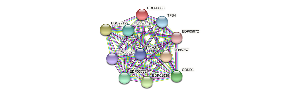 EDO98856 protein (Chlamydomonas reinhardtii) - STRING interaction network