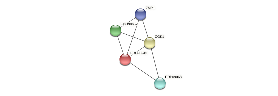 EDO98943 protein (Chlamydomonas reinhardtii) - STRING interaction network