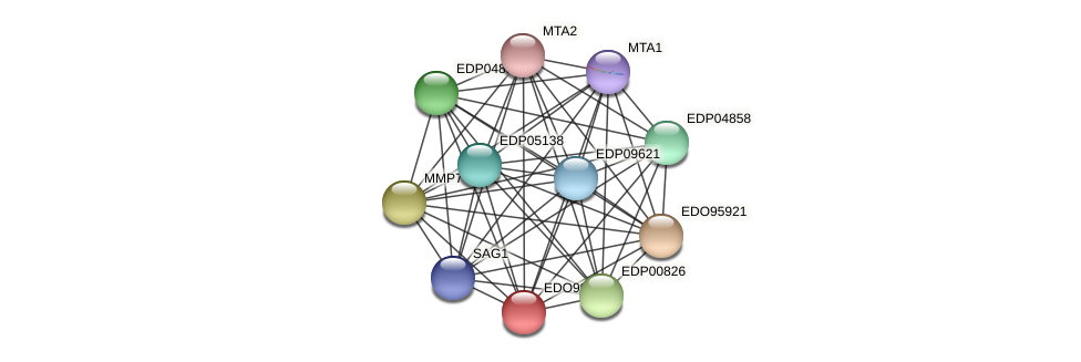 EDO99231 protein (Chlamydomonas reinhardtii) - STRING interaction network