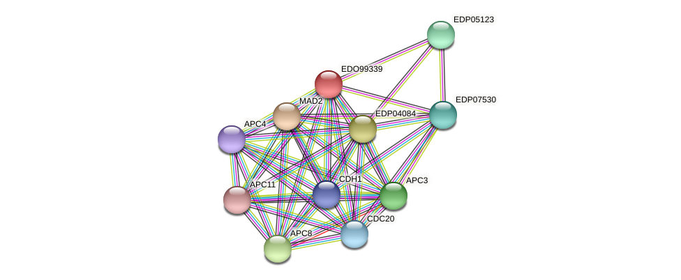 EDO99339 protein (Chlamydomonas reinhardtii) - STRING interaction network