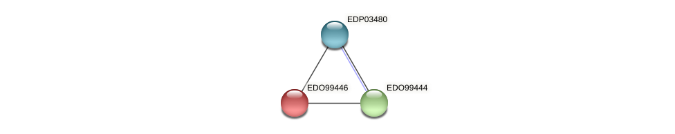 EDO99446 protein (Chlamydomonas reinhardtii) - STRING interaction network