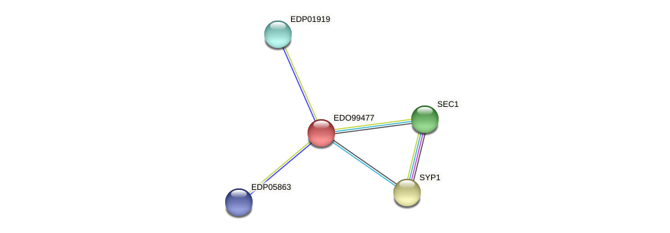 EDO99477 protein (Chlamydomonas reinhardtii) - STRING interaction network