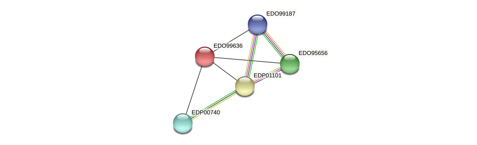 EDO99636 protein (Chlamydomonas reinhardtii) - STRING interaction network