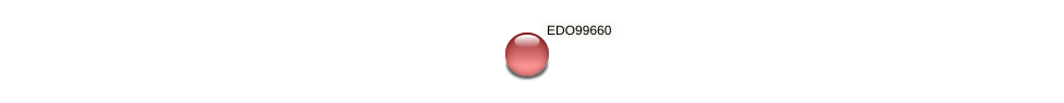 EDO99660 protein (Chlamydomonas reinhardtii) - STRING interaction network