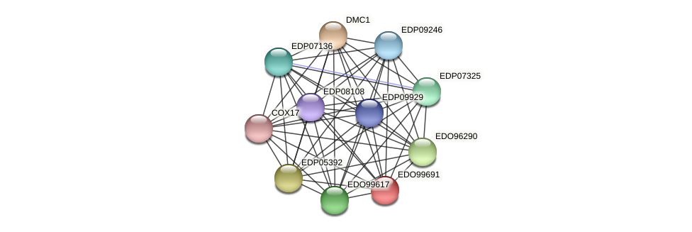 EDO99691 protein (Chlamydomonas reinhardtii) - STRING interaction network