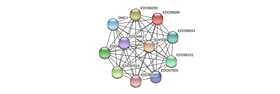 EDO99698 protein (Chlamydomonas reinhardtii) - STRING interaction network