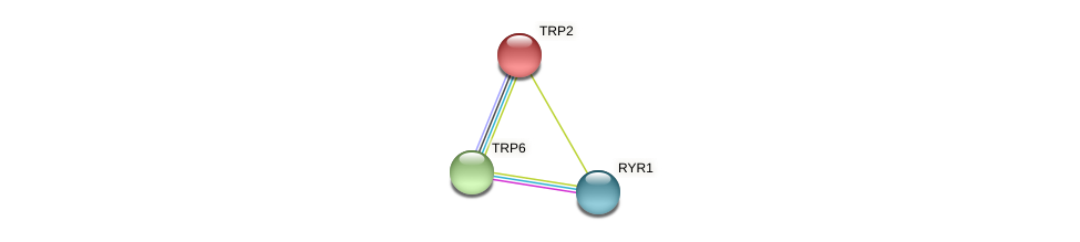 TRP2 protein (Chlamydomonas reinhardtii) - STRING interaction network