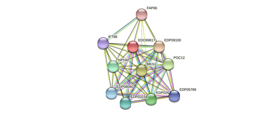 EDO99817 protein (Chlamydomonas reinhardtii) - STRING interaction network