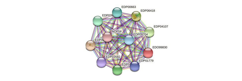 EDO99830 protein (Chlamydomonas reinhardtii) - STRING interaction network