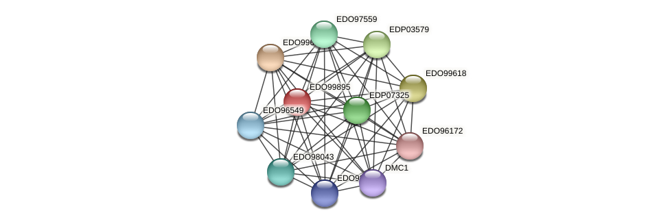 EDO99895 protein (Chlamydomonas reinhardtii) - STRING interaction network