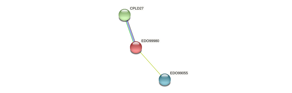 EDO99980 protein (Chlamydomonas reinhardtii) - STRING interaction network
