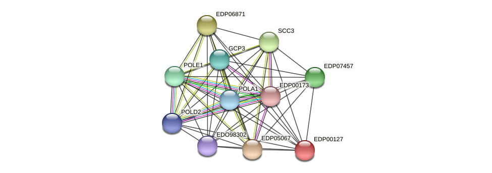 EDP00127 protein (Chlamydomonas reinhardtii) - STRING interaction network