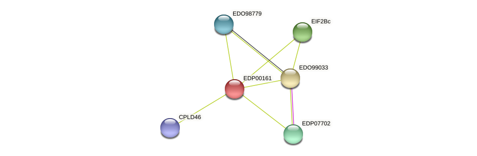 EDP00161 protein (Chlamydomonas reinhardtii) - STRING interaction network