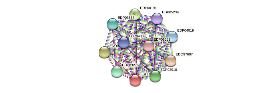 EDP00253 protein (Chlamydomonas reinhardtii) - STRING interaction network