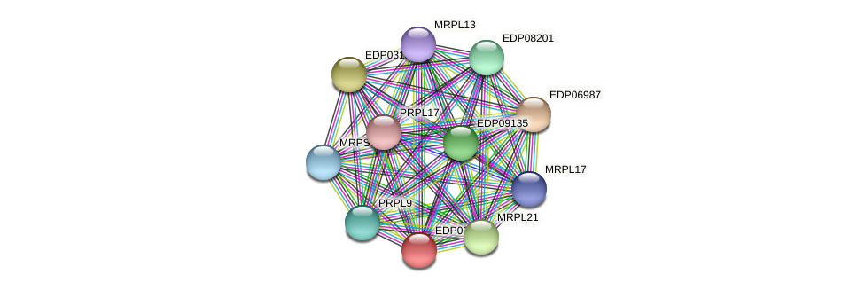 EDP00293 protein (Chlamydomonas reinhardtii) - STRING interaction network