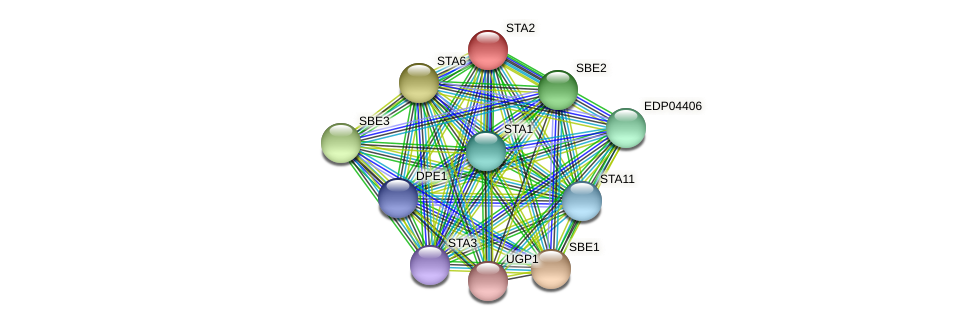 STA2 protein (Chlamydomonas reinhardtii) - STRING interaction network