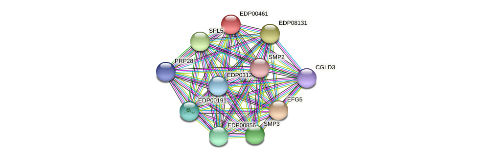 EDP00461 protein (Chlamydomonas reinhardtii) - STRING interaction network