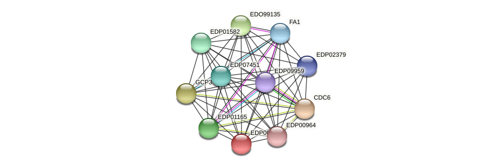 EDP00505 protein (Chlamydomonas reinhardtii) - STRING interaction network