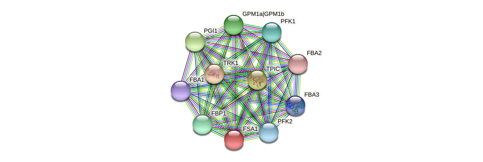 FSA1 protein (Chlamydomonas reinhardtii) - STRING interaction network