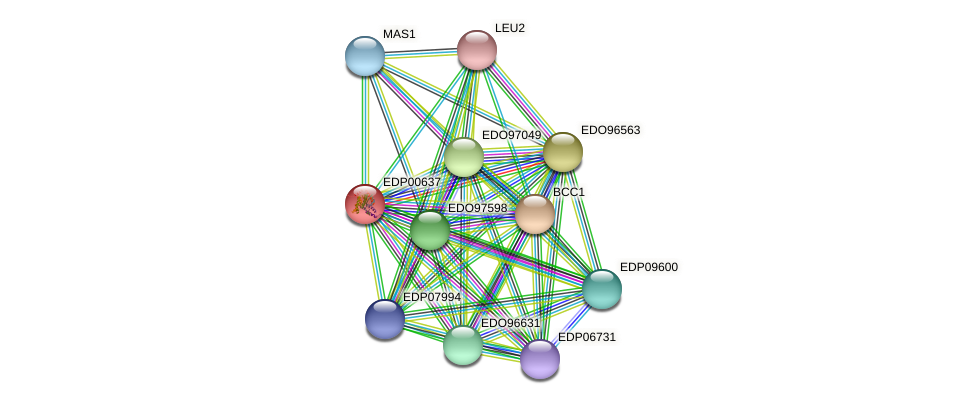 EDP00637 protein (Chlamydomonas reinhardtii) - STRING interaction network