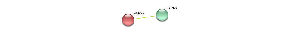 FAP29 protein (Chlamydomonas reinhardtii) - STRING interaction network